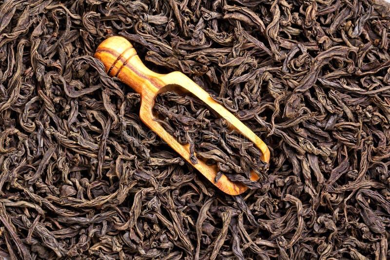 Thé noir photo stock