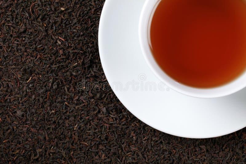 Thé noir avec l'espace de copie photographie stock libre de droits