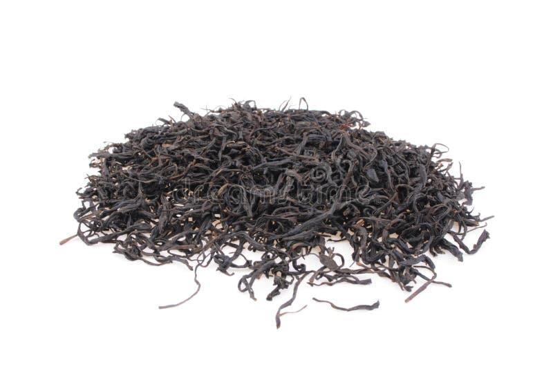 Thé noir d'isolement image stock