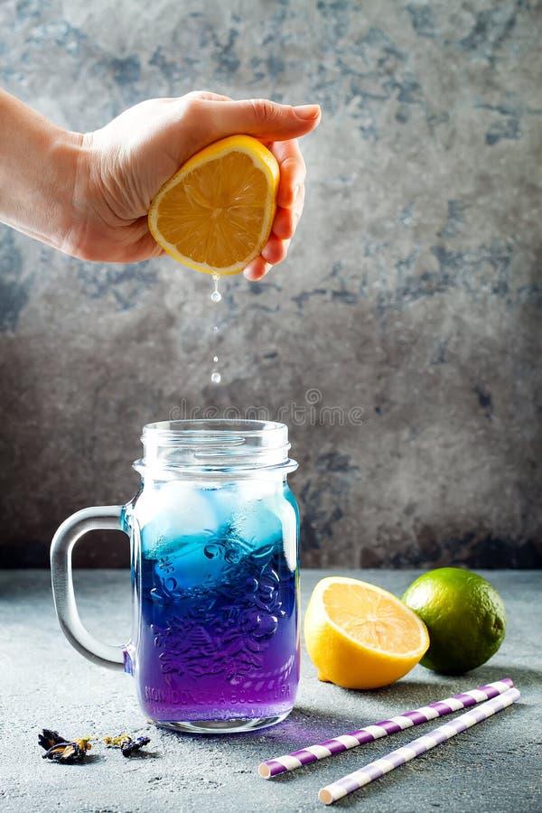 Thé ou limonade glacé bleu de fleur de pois de papillon Boisson de fines herbes de detox sain image libre de droits