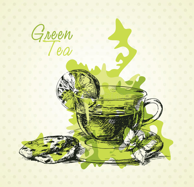 Thé vert illustration libre de droits