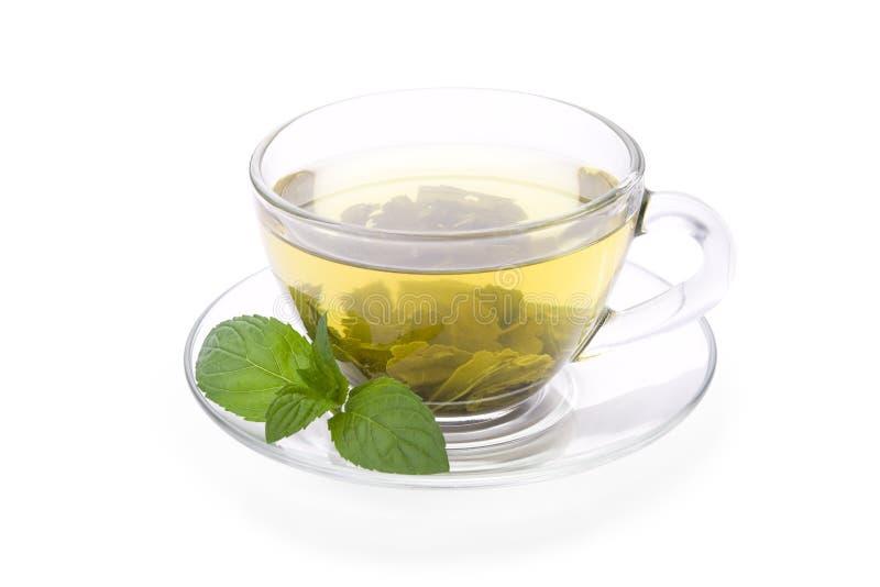Thé vert avec la menthe de poivre photo libre de droits