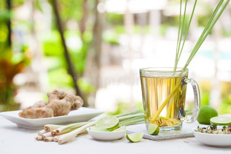 Thé vert de fines herbes avec le schénanthe et le gingembre photographie stock libre de droits