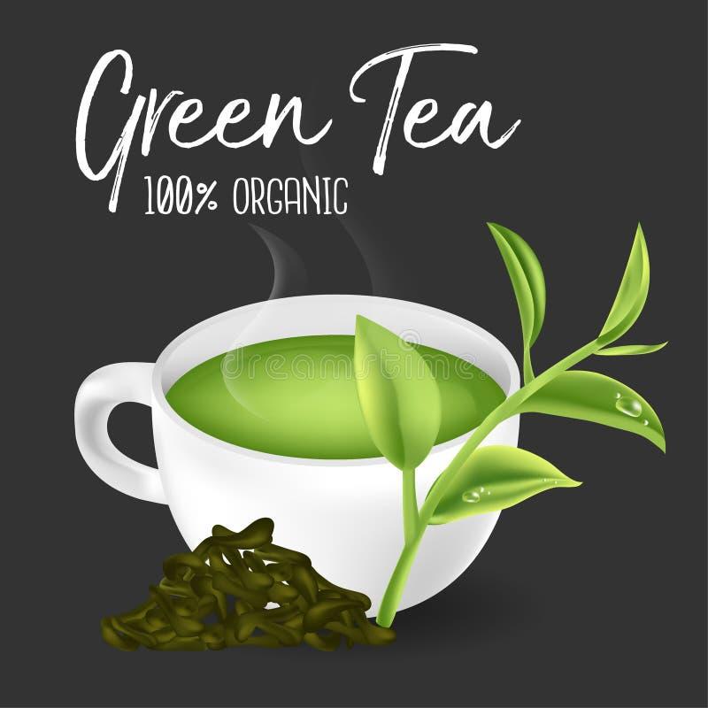 Thé vert, feuille de thé verte illustration de vecteur