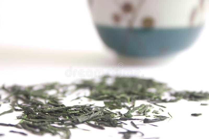 Thé Vert Japonais Image libre de droits