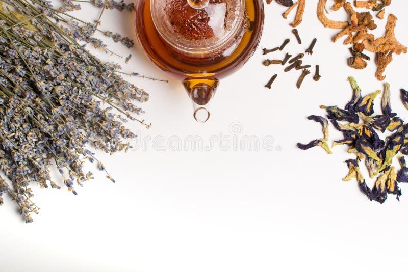 Théière et collection de fines herbes photographie stock