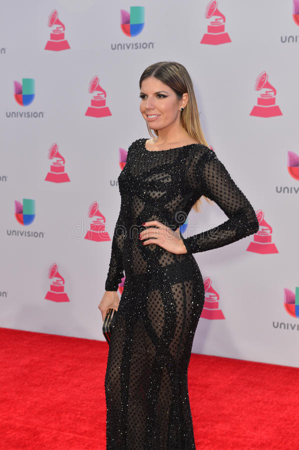 The 16th Annual Latin GRAMMY Awards. LAS VEGAS , NOV 19 : TV personality Fernanda Kelly attends the 16th Annual Latin GRAMMY Awards on November 19 2015 at the royalty free stock photography