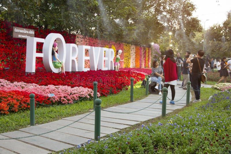 13th Chiangrai kwiatu festiwal 29 2016 Dec, 31 Jan - 2017 Przy Dzwonię i Kome park w chiangrai gubernialny Tajlandia na 15 Jan 20 fotografia stock