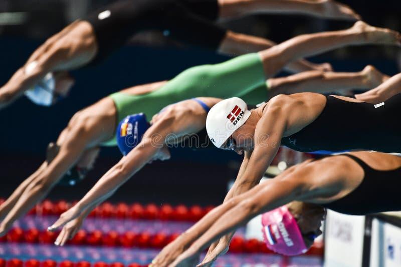 15th FINA WORLD CHAMPIONSHIPS Barcelona 2013 royalty free stock photography