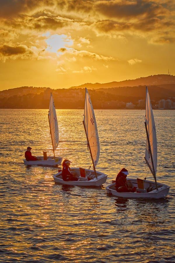 30th internationella trofé för optimist för Vila de Palamà ³ s, 14th nationkopp Segelbåtar som in seglar till hamnlilla staden Pa royaltyfri fotografi