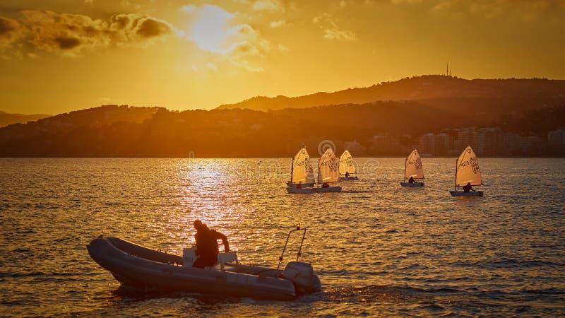 30th internationella trofé för optimist för Vila de Palamà ³ s, 14th nationkopp Segelbåtar som in seglar till hamnlilla staden Pa royaltyfri foto