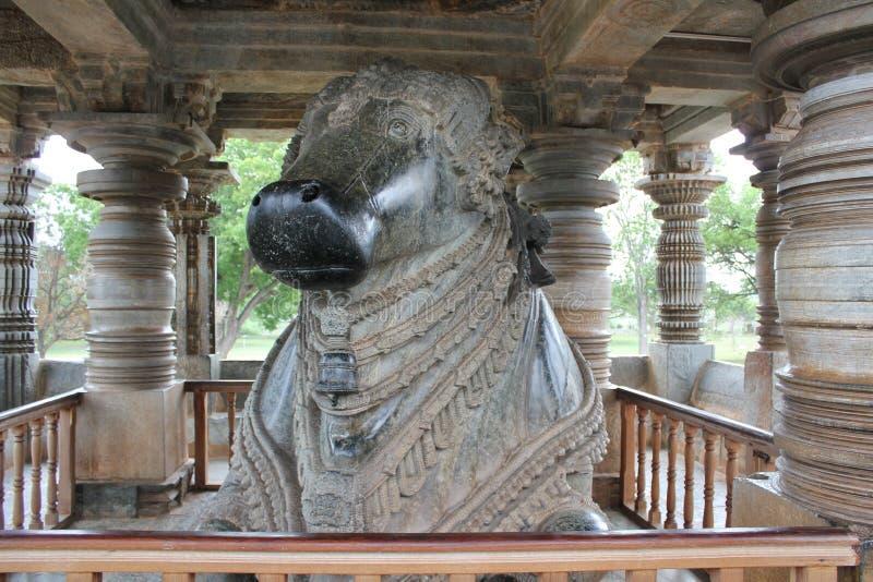 7th Largest Monolithic Nandi - Hoysaleswara Temple stock photo