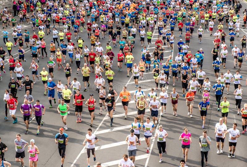 24th Nordea Riga maraton royaltyfri bild