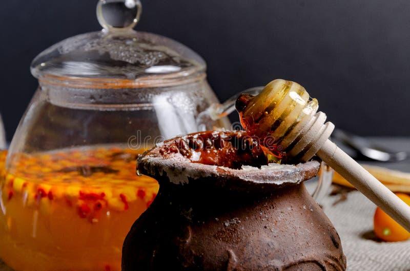 Th? sain d'argousier de vitamine dans des tasses en verre avec les baies crues fra?ches d'argousier images stock