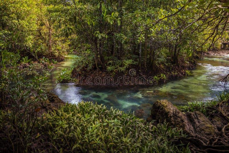 Tha bella e destinazione turistica famosa di Pom Klong Song Nam in Krabi, Tailandia fotografia stock