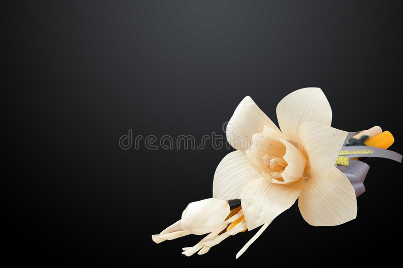 Thai Artificial Funeral Daffodil Flower. Or Dok mai chan isolated on black background with clipping path stock photos