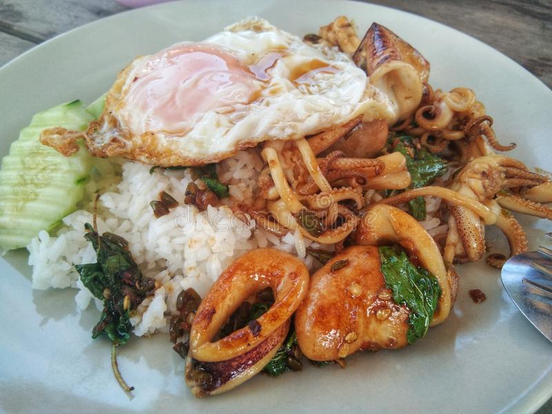 Thai basil seafood on rice and egg. Thailand, fresh, pepper, chili, red, shrimp, squad, stir, hot, background, dish, dinner, asian, spicy, fry, mince stock image