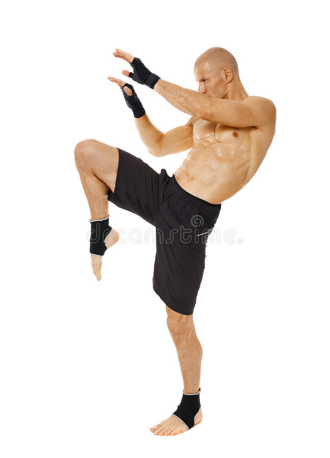 Thai box fighter kicking with the knee. Muay thai fighter delivering a knee blow, isolated on white background royalty free stock images