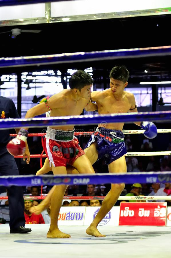 Thai Boxing stock photo