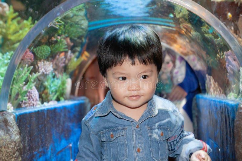 The Thai boy in the aqurium. With curiosity royalty free stock photos