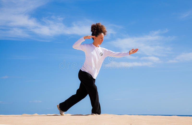 Download Thai-chi in the dunes stock image. Image of martial, young - 27232423