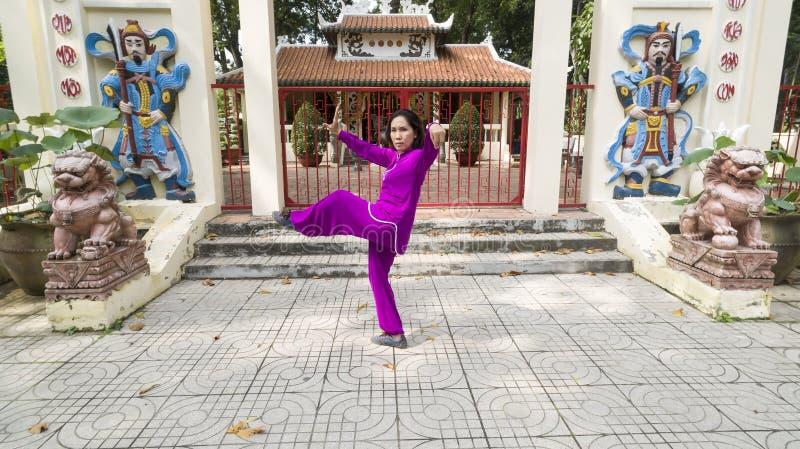 Tai Chi master royalty free stock photos