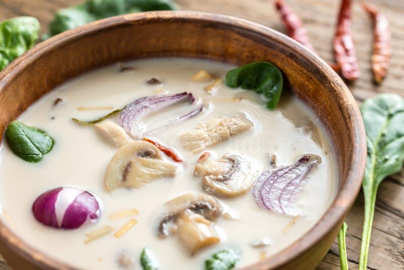 Thai coconut cream soup royalty free stock image