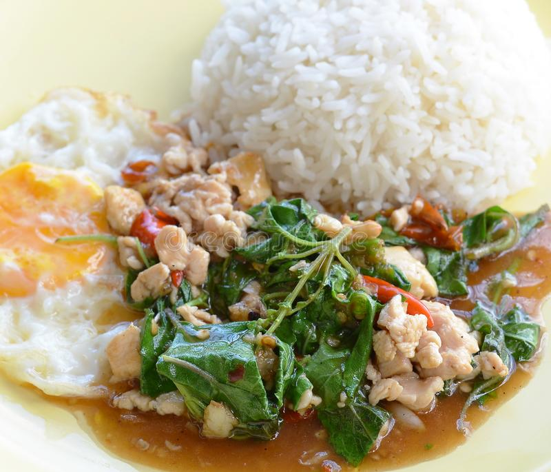 Thai cuisine, basil fried rice and fried egg. royalty free stock image