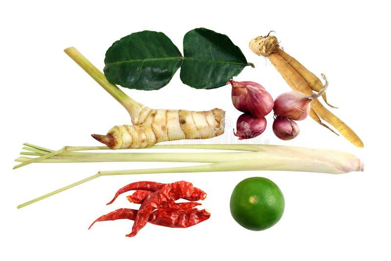 Thai curry för ingredienser och thai varm och sur soppa för mat, kryddig soppa för citrongräs: torkad chili, citrongräs, röd lök arkivbilder