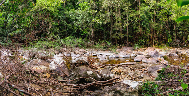 Thai dark tropical forest and rapid mountain river stock images