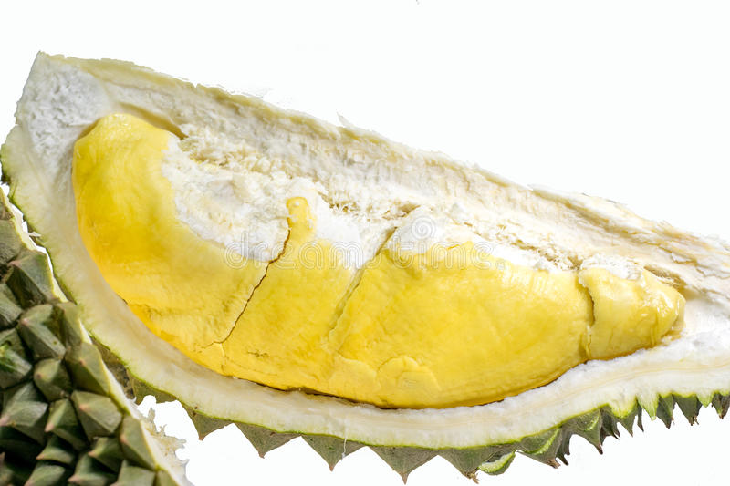 The thai delicious fresh durian on white background. Thai delicious fresh durian on white background royalty free stock images