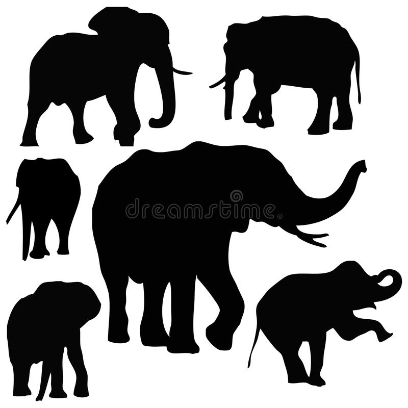 Thai Elephants. Silhouettes Vector for Use royalty free illustration