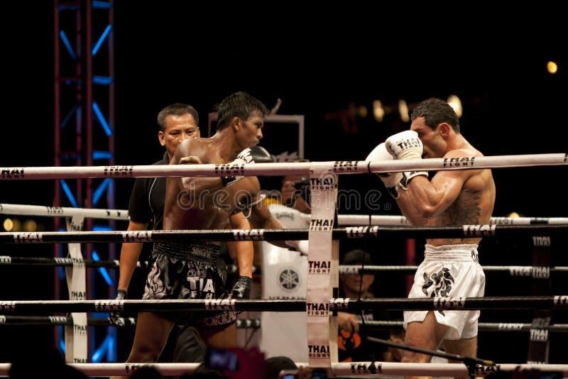 Thai Fight royalty free stock image