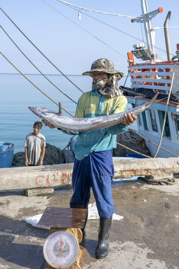 Thai fisherman shows caught fish on the pier near fishing boat on the island Koh Phangan, Thailand royalty free stock photos