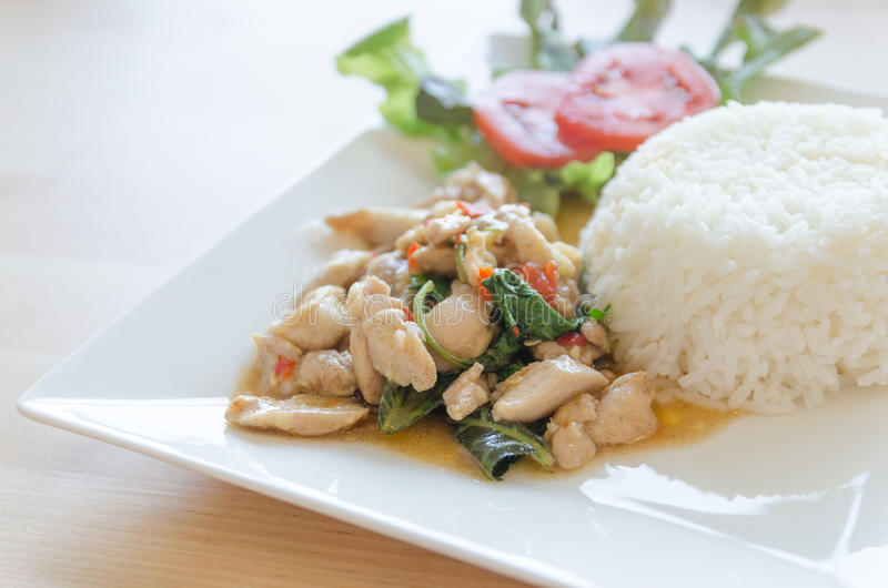 Thai food, chicken fried with hot basil stock image