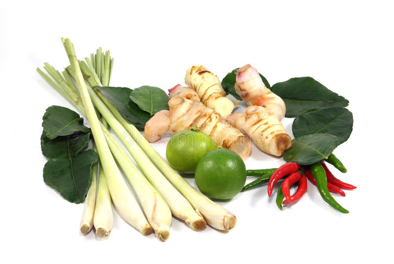 Thai food ingredient for Tom yum. Isolated on white background stock photo