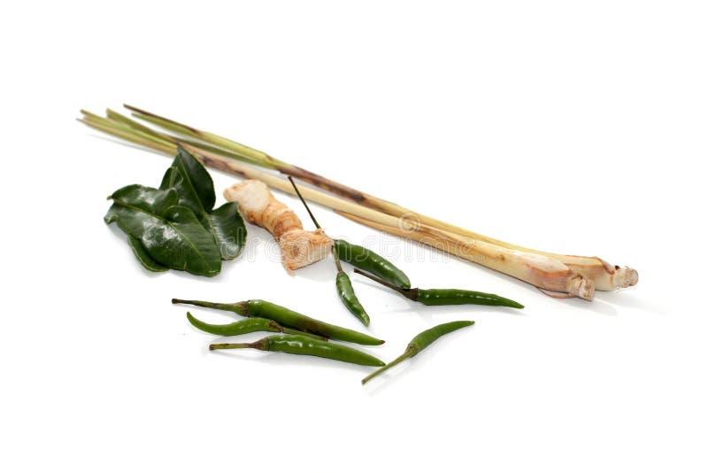 Ingredient for Tom yum ginger,Galangal,lemon grass,KAF royalty free stock image