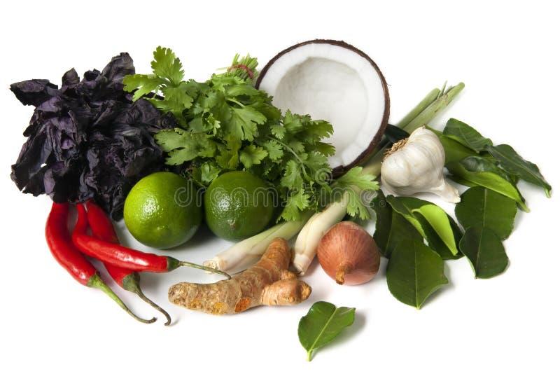 Download Thai Food Ingredients stock image. Image of cilantro - 14854991