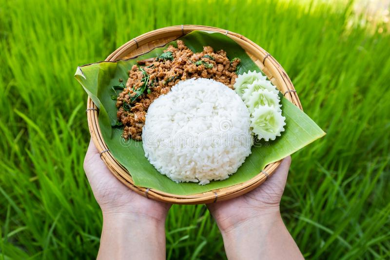 Thai Food Rice topped with stir-fried pork and basil cucumber in traditional bamboo weave dish and banana leaf on hand royalty free stock images
