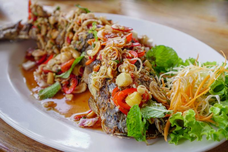 Thai Food,Snakehead fish on the white plate stock photography