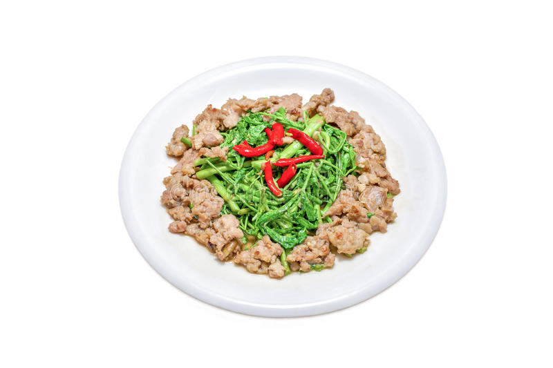 Thai food, Stir Fried Water Mimosa and Minced Pork, Phad Pak Kra Ched Moo Sap, On a White Plate. royalty free stock photos