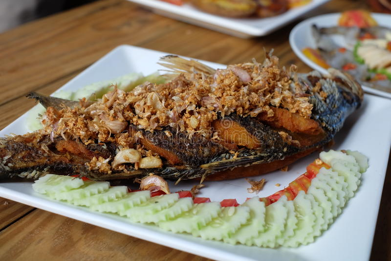Thai fried fish with garlic royalty free stock image