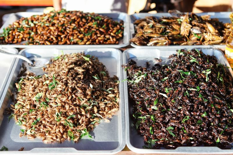 Thai Fried Insect at street food. Thai Fried Insect worms at street food market in Thailand stock photos