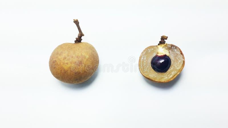 Download Thai fruit Longan stock photo. Image of summer, sweet - 43351958