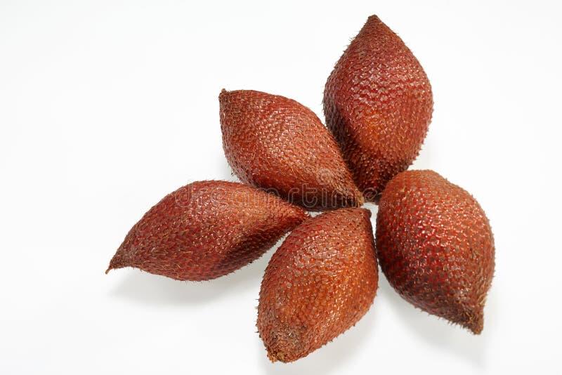 Thai fruit (Sala or Zalacca eludes) royalty free stock images