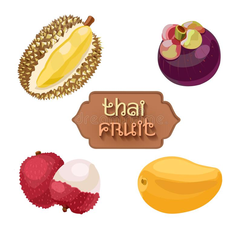 Free Thai Fruits. Fruit From Thailand. Lychee, Durian, Mango, Mangosteen. Asian Fruit Set Royalty Free Stock Photography - 217022427