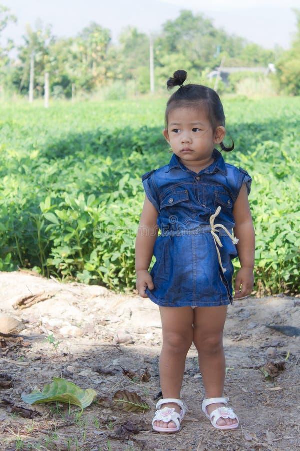 Thai girl in bean garden. Asian stock photo