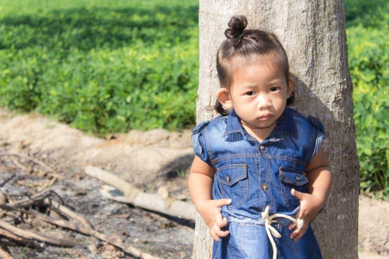 Thai girl in bean garden. Asian stock photos