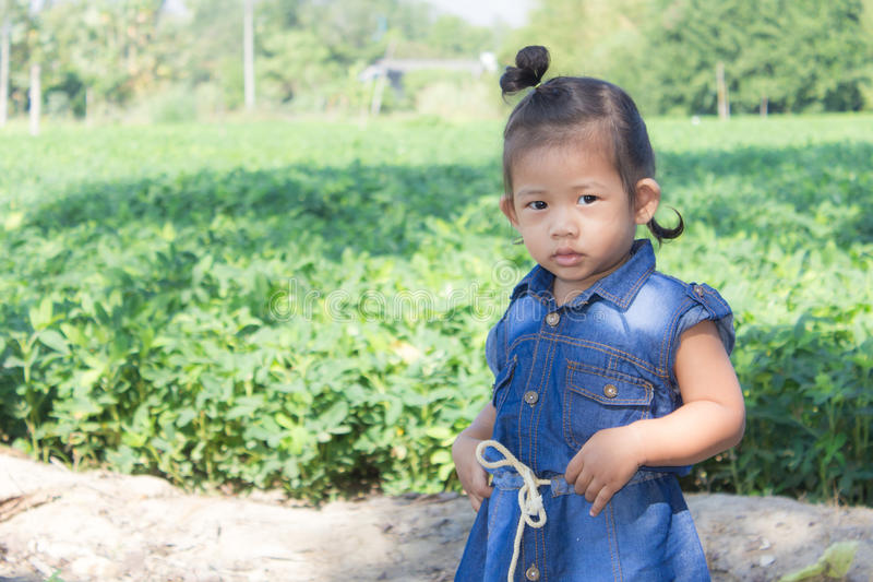 Thai girl in bean garden. Children royalty free stock photo