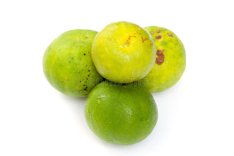Download Thai green lime stock image. Image of eating, freshness - 29693205